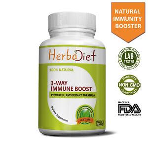 Premium Immune System Booster - Elderberry , Vitamin C & Zinc - 3 in 1 Support