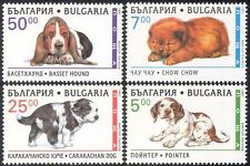 Bulgaria 1997 Bassett Hound/Chow/Puppies/Dogs/Animals/Pets/Nature 4v set (b9725)