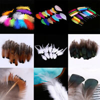 50x Crafting Pheasant Feather Clothing Jewelry DIY Handmade Decoration Material