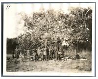 Tchad, Indigènes et la sécherie de viande  Vintage silver print. Série de photos