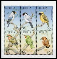Liberia Birds on Stamps 1999 MNH World of Birds Sparrows Grosbeaks Weavers 6v MS