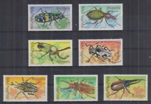 T832. Mongolia - MNH - Insects - Beetles