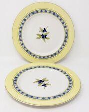 "Royal Doulton Carmina - Berries - 2 x 9"" Breakfast/Salad/Dessert Plates - 2nd."