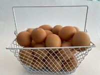 WIRE CHICKEN EGG BASKET... FOR GATHERING EGGS ...POULTRY... Rectangle...White