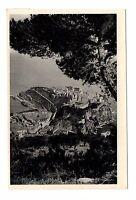 Monaco - Le Rocher entre les pins   (C3324)
