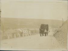 Belgique, Mons, les Alentours, Transport de Bois, Charrette à Cheval  Vintage ci