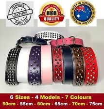 Leather Dog Collar Staffy Bull Terrier Big Dog Collar All Sizes - Aussie Made