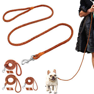 4ft Braided Dog Leash Strong Rolled Mountain Climbing Rope Lead Soft for Yorkie