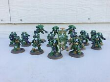Warhammer 40k Primaris Space Marines Sons of Medusa Army Painted