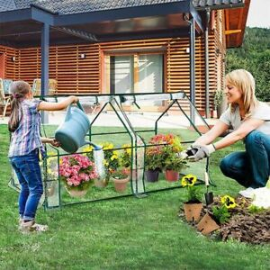 Greenhouse Flower Garden Shed Complete With Frame Cover Tunnel Green House 120L