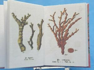 1:12 Scale Book, The Plants of the sea (corals) Edwardian, Crafted by ken Blythe