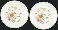 2 Corelle WILDFLOWER 10-1/4 in Plates Vtg Floral Corning Pattern Cottagecore