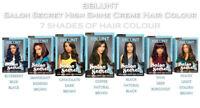 BBLUNT Salon Secret High Shine Creme Hair Colour 100g Free Shipping Worldwide