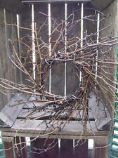 Primitive Twig Wreath twiggy rustic farmhouse cupboards *can be painted*