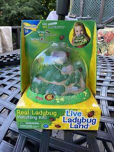 Insect Lore Kit - LadyBug Land Live Ladybug Hatching Kit 1969