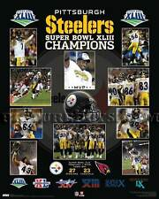 Pittsburgh Steelers Super Bowl 43 Championship Picture Plaque