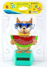 "Solar Powered Dancing Dog Chihuahua Eating Watermelon ""Hello Summer"" NEW"