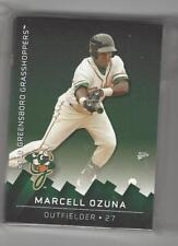 2010 GREENSBORO GRASSHOPPERS TEAM SET COMPLETE MINORS LOW A FLORIDA