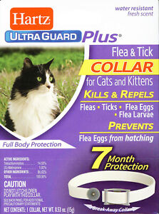 Hartz UltraGuard Plus FLEA & TICK COLLAR for Cats & Kittens • Prevents Flea Eggs