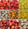 Artificial Mini Fruit Vegetables Plastic Puzzle Toy Model Home Party Décor DIY