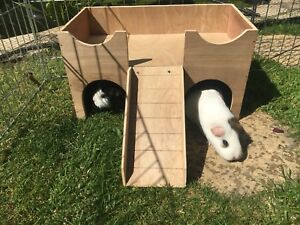 Guinea Pig House Shelter Hide Out Castle