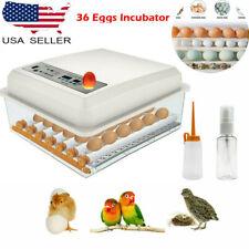 New listing Small Egg Hatcher Machine 36 Eggs Digital Mini Automatic Incubators with Turner