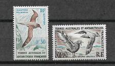 Timbre N° 12/13  Neuf** - Terres australes et antarctiques françaises