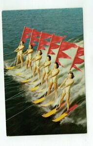 FL Cypress Gardens Florida Vintage post card - Aquamaids in Water Show