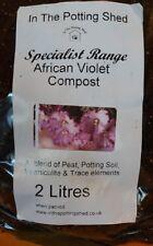 African Violet compost