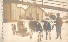 NORTHFIELD, VT ~ BOY ON SLED PULLED BY 2 COWS, DOG, REAL PHOTO PC  used 1907