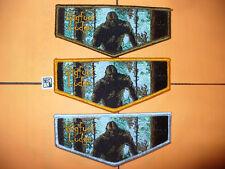 OA Bigfoot Lodge 620,O/B/V,First Flap,FF,St,146,226,302,Glaciers Edge Council,WI
