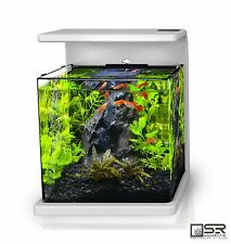 Nano/Desktop Aquarium Kit 4 Gallon All Glass LED Lighting SR Aquaristik