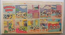 (23) Donald Duck Sunday Pages by Walt Disney from 1952 Third Page Size