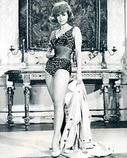 Tina Louise 8x10 B&W Classic Celebrity Photo #42