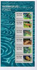 2013 Freshwater Life I Ponds Post and Go Pack No P&G 11. 6 X 1st Class Stamps
