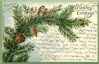 Colorful Lil Birds~Pine Cones~Forest~Fir Scent~Schmidt Germany~2 1901 Postcards