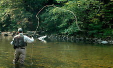 fun Fly Fishing, LEARN THE BASICS OF FLY FISHING training on a DVD