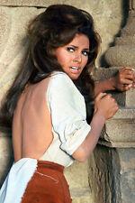 Bandolero! Raquel Welch 11x17 Mini Poster bare back in torn dress