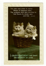 1920's Antique British Cats In A Basket Kitten vintage photo postcard