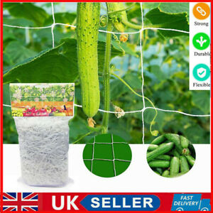 Garden Plant Climbing Net Polyester Grape Vine Grow Support Trellis Netting UK