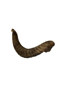 Lamb Horn Dog treat Chew High Protein low Fat - Choose your Size