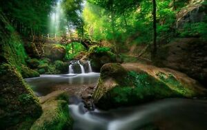 Green Forest Waterfall Canvas Wall Art Picture Print Framed 20x30 INCHES