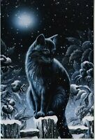 Black CAT ART Night Moon Snow Winter Dogrose by Garmashova NEW Russian Postcard