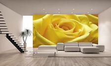 Yellow Rose 2 Wall Mural  Photo Wallpaper GIANT WALL DECOR POST