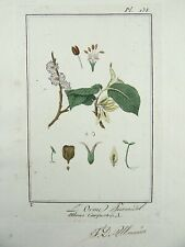 1801 R. Turpin - ELM Manuscript LARGE PAPER EDITION original hand colour