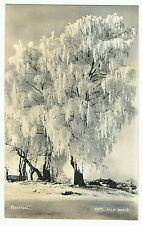 Rimfrost by Falk of Eksjo, unposted, RP,  Lindbergs County? Sweden, by Falks