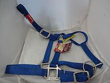 Premium Nylon Horse Halter Royal Blue  Brushed Nickel Buckles NWT Tough 1 Adjust