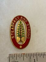 Authentic US Army 13th Field Artillery Brigade DI DUI Unit Crest Insignia G23