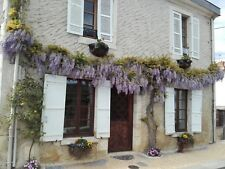 French property, - Charming Edge of the Village House