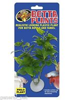 Zoo Med Betta Plant  Philo